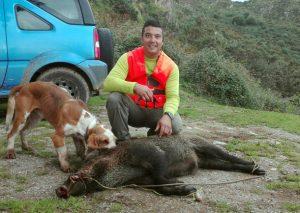 En el lote de Cetín. En el cuartel parragués de Cetín, el cazador Ismael González Pérez, miembro de la cuadrilla gestionada por Bandi, conseguía tumbar un cerdo salvaje de 75 kilos. :: L. G. Q.