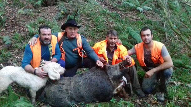Navajero de 133 kilos abatido por Olegario Niño, en Piloña. ::. Asdeca