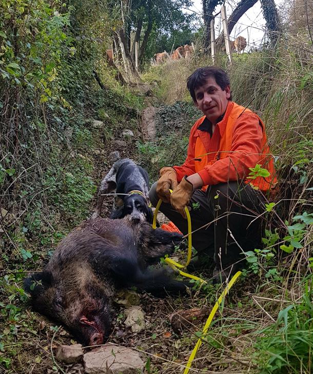 Abel, montero de la cuadrilla La Figarona, con un jabalí de 80 kilos. :: D. M. Molina