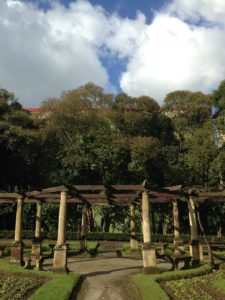 foto-3-reducido-jardin-frances-del-parque-ferrera-000000-img_4477