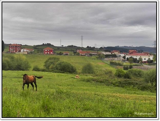 los campos,corvera